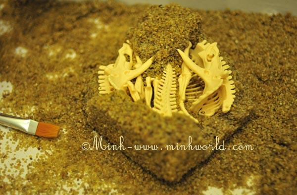 dinosaurier-ausgrabung-3