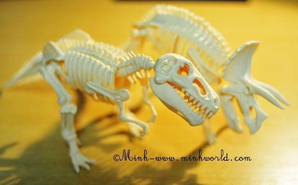 dinosaurier-ausgrabung-4