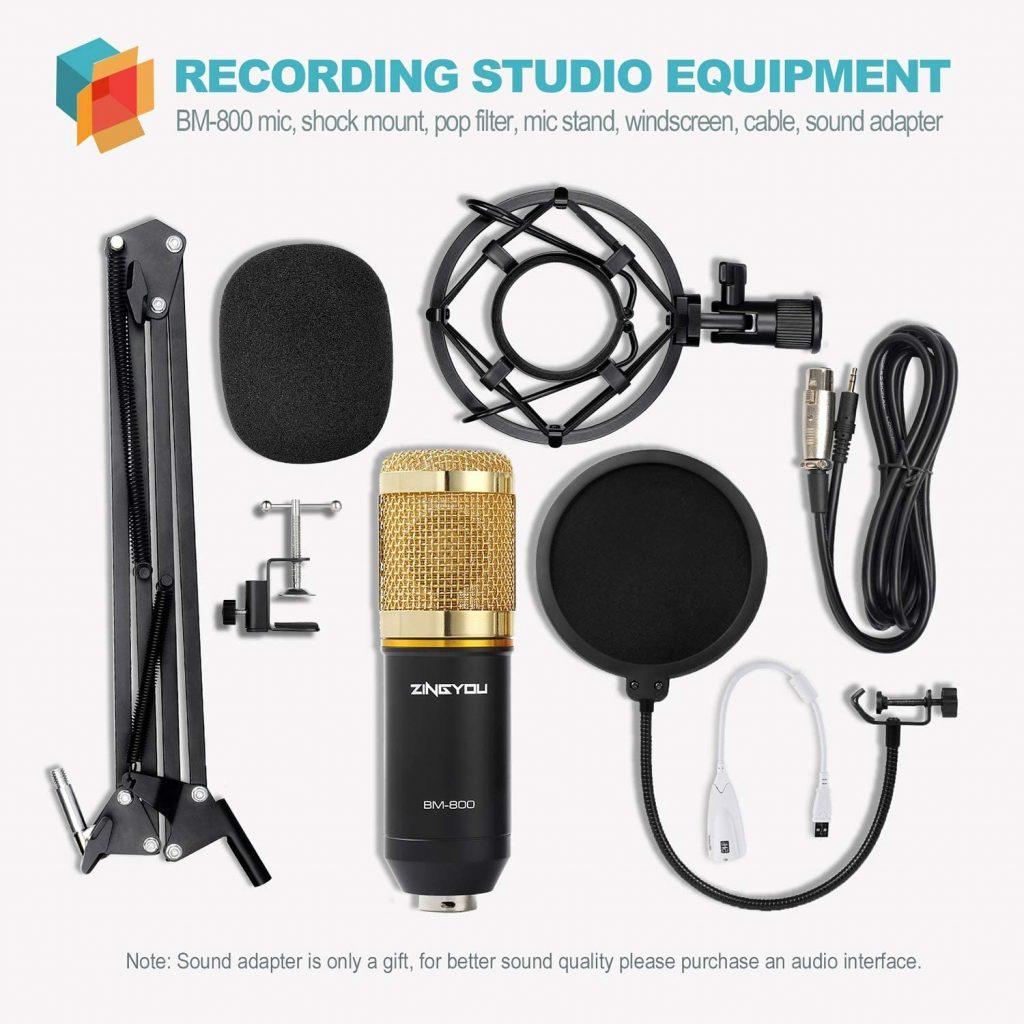 Microphone BM800